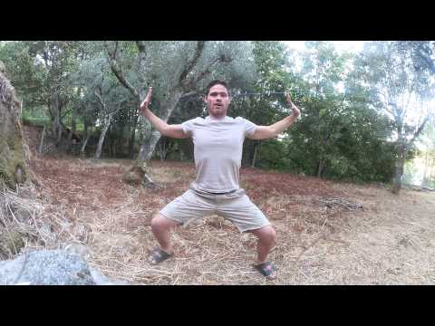 Qi Gong warm up and workout