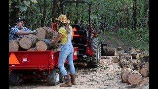 548-gathering-beautiful-cherry-saw-logs-and-firewood