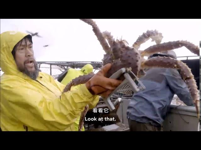 你為什麼該看《漁人的搏鬥第16季 》?