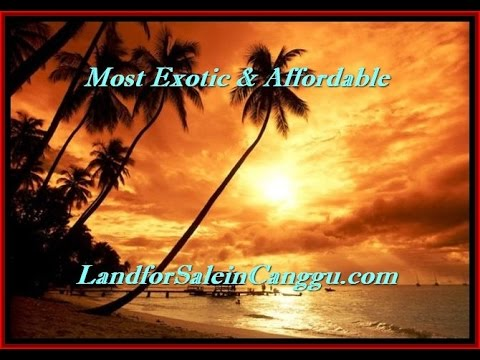 LAND FOR SALE IN CANGGU BALI -  most AFFORDABLE PROPERTY