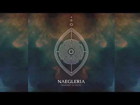 Movement Of Static - Naegleria [Full Album] Mp3