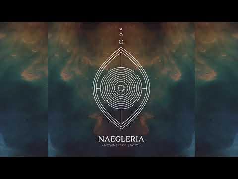 Movement Of Static - Naegleria [Full Album] Mp3