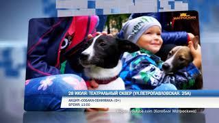 Выходные в Перми: мокрое побоище, собака-обнимака и праздник топора