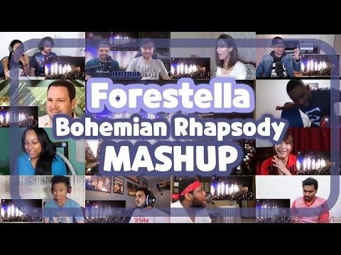 """포레스텔라 Forestella """"Bohemian Rhapsody (보헤미안랩소디)"""" Reaction MASHUP 해외반응 모음"""