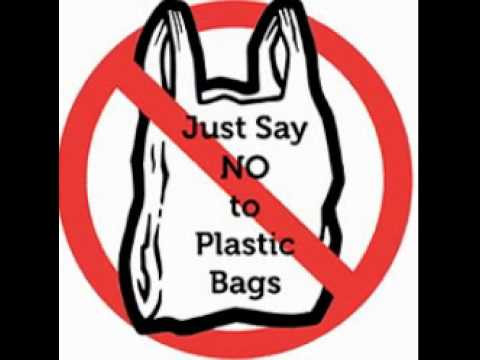 Say no to polybags essay