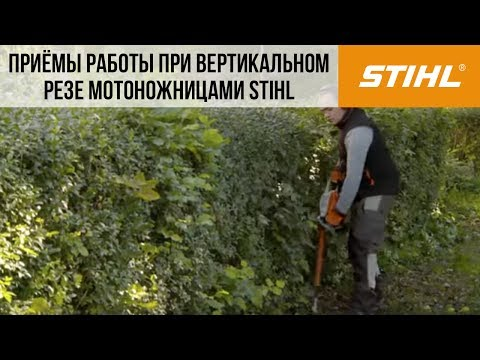 Электрический кусторез STIHL HSE 71
