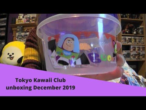 Tokyo kawaii club unboxing December 2019