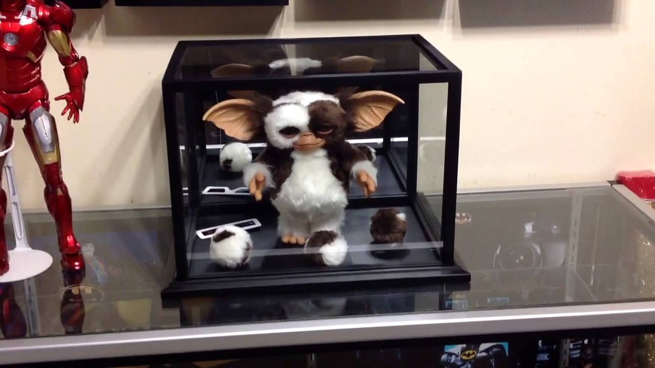 Gizmo in his display case - YouTube