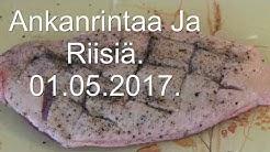 2017 05 01 Ankanrintaa Ja Riisiä
