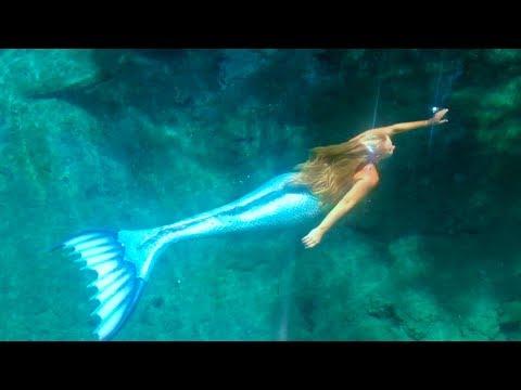 Mermaid Melissa Live Sighting