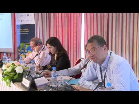 Lionel Zinsou, Can Africa finance its development?