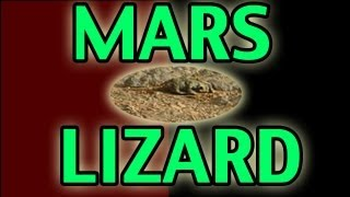 EPIC Lizard found in Mars Curiosity Rover Photo! Life on Mars!
