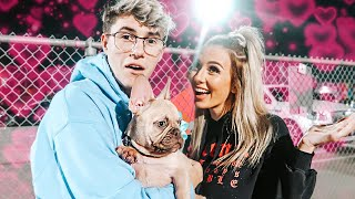This Surprise Made My Boyfriend Cry!! *cute puppy reveal*
