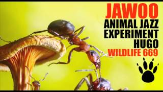 Jawoo - Animal Jazz (Original Mix) [Wildlife]