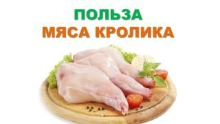 Польза мяса кролика.