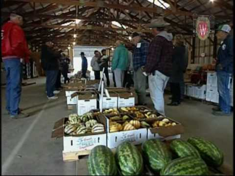 Fresh Market Fruit & Vegetables, Part 1