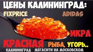 Цены Калининград 2019: Красная икра, угорь, adidas, fixprice, мясо. Сити на московском.
