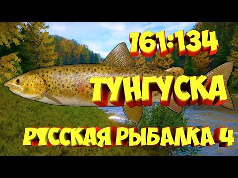 русская рыбалка 4 - Уловистая точка река Нижняя Тунгуска - рр4 фарм Алексей Майоров