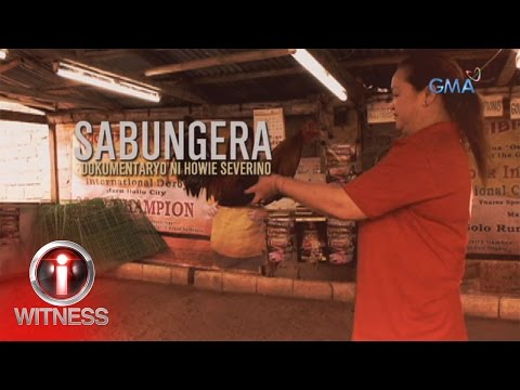 "I-Witness: ""Sabungera"", a documentary by Howie Severino (full episode)"