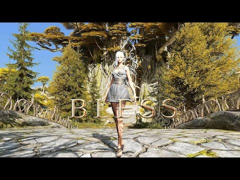 bless online how to play paladin