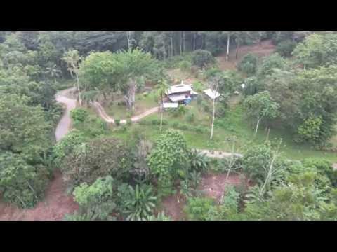 Costa Rica drone footage jungle and farm expats life Pura Vida