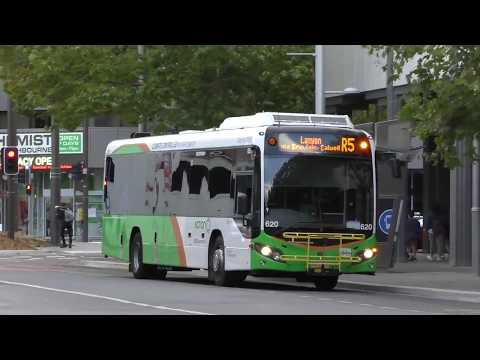 Buses in Canberra; Australia's capital city