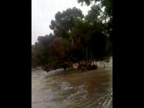 flood.avi