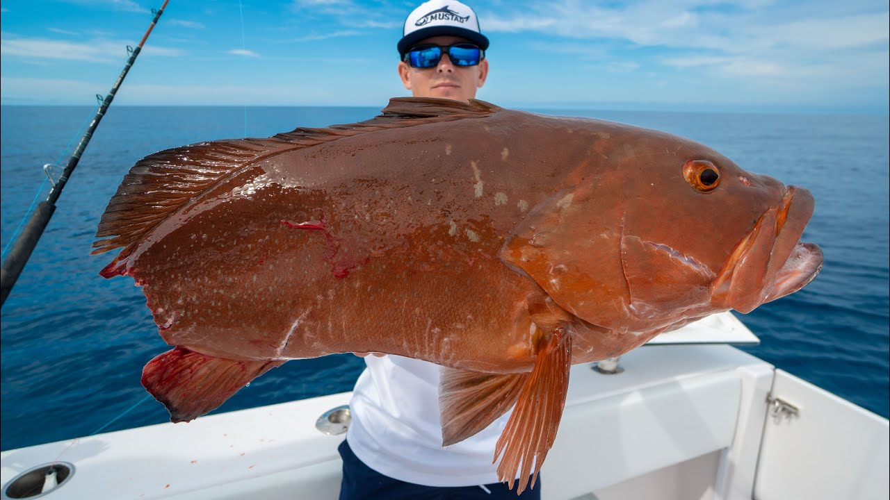 RECORD Fish Ruined...Catch Clean Cook (Deep Sea Fishing)