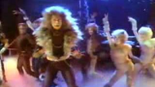 Rum Tum Tugger music video