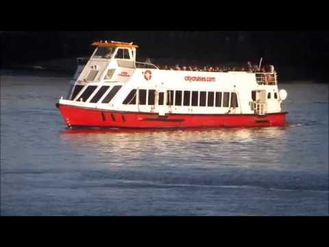 River Thames Tours in London