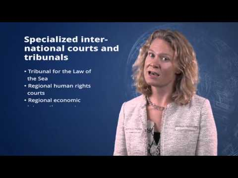 1.4 Overview of the International Courts and Tribunals in The Hague