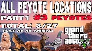 GTA V -  Localização dos Peiotes (Parte 1) [ peyote 1-2-3 ] (ALL PEYOTE LOCATIONS PART 1 ) 3/27