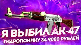 Я ВЫБИЛ AK-47 - ГИДРОПОНИКУ ЗА 9000 РУБЛЕЙ!!!ЦЕЛЬ ВЫПОЛНЕНА!