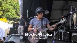 Noche Mágica - A Palo Secoo YouTube Videos