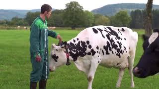 Julien, éleveur dans les Vosges, raconte ses pratiques...