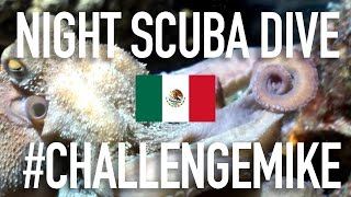 MEXICO: COZUMEL NIGHT SCUBA DIVE