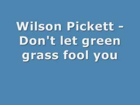 Wilson Pickett - Don't let green grass fool you - with LYRICS