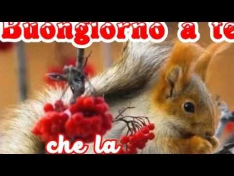 Buona Domenica Fanciulline 3 Un Cuore Di Amicizia E Amore 3