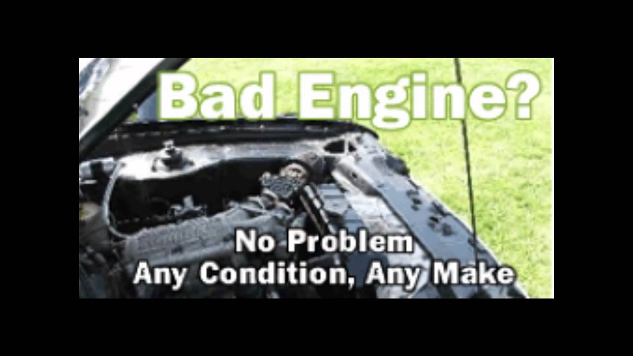 FLORIDA AUTO RECYCLING - $CASH$ for Junk Vehicles (Free Towing ...
