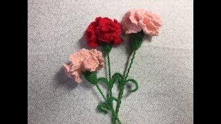 説明 母の日も近いことなのでカーネーションを編んでみました 花束にし...