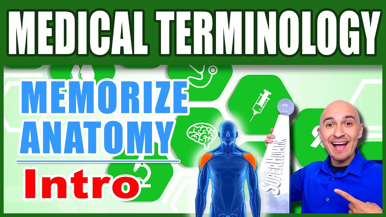 🏥 Medical Terminology Human Anatomy - How to Memorize Biology ...