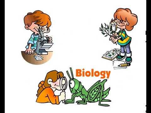 Презентации по биологии Скачать готовые презентации