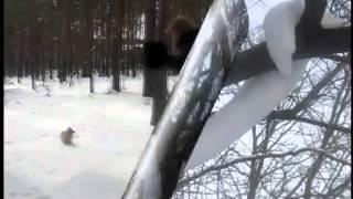 Я играла пушистым снегом...