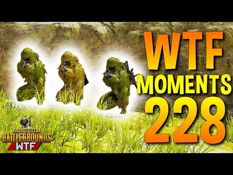 PUBG Daily Funny WTF Moments Highlights Ep 228 (playerunknown\'s battlegrounds Plays)