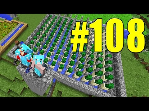 Minecraft Equipe Survival #108 - O FARM DE CACTUS AUTOMÁTICO - ft LipaoGamer e Jabuti
