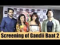 Starcast at the screening of ALTBalaji's Gandii Baat 2