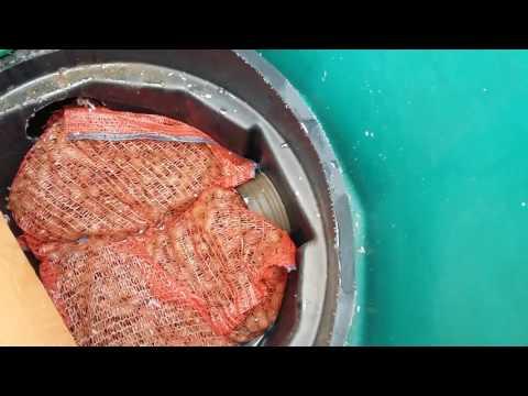 Высокие грунтовые воды и септик Термит, канализация септик