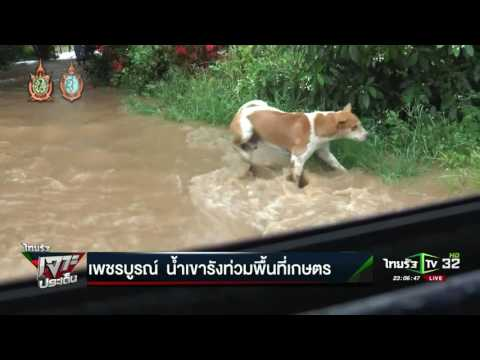 ขอนแก่น น้ำท่วมหมู่บ้านและ ร.ร. | 14-09-59 | ไทยรัฐเจาะประเด็น | ThairathTV