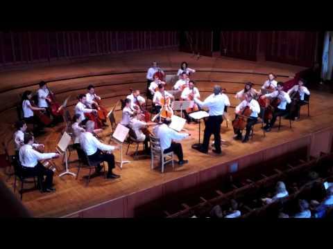 24 Cellists play the Cantique de Jean Racine Op. 11 by Gabriel FAURE