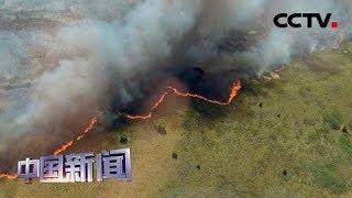 [中国新闻] 墨西哥:世界遗产保护区圣卡安保护区因山火受损严重 | CCTV中文国际